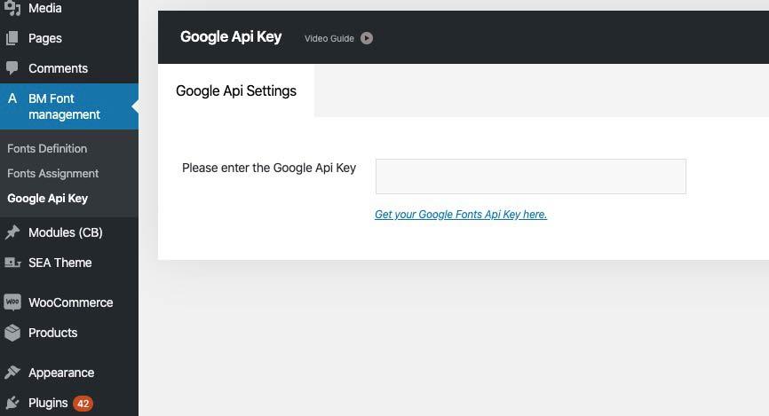 google-apikey